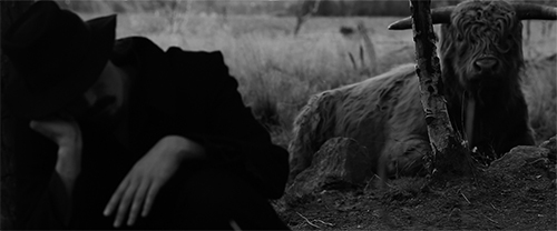 Teppo Vapaus - Runoilija Ulos! (2015). Ohjaus: Herra Ylppö. Kuvassa: Teppo Vapaus. Kuva: Herra Ylppö. © Frank & Frank Film Productions